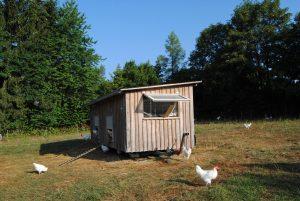 Ein Haus für Huhn und Hahn, Hänsel & Gretel, das Bruderhuhn-Projekt der Rengos